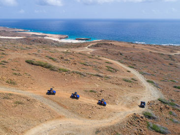 Aruba UTV Adventure - Afternoon (min age 10)