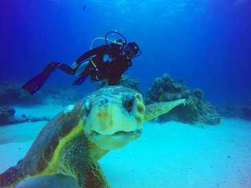 8 Dive Package (divers must be certified, min age 10) - Viva Wyndham Dominicus Beach