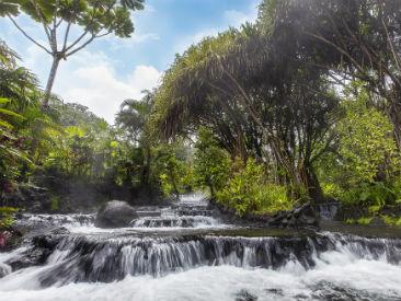 Tabacon Thermal Resort and Spa, La Fortuna de San Carlos, Arenal