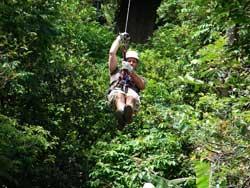 Zip Line - Canopy Tour