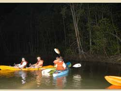 Night Kayaking