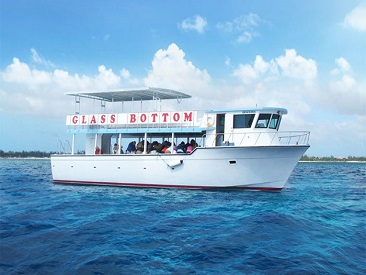TOP 5 - Glass Bottom Boat Tour