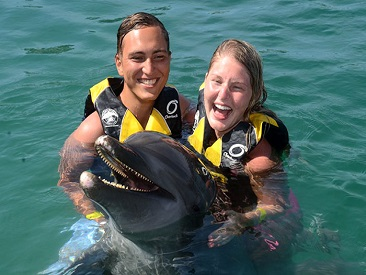 Combo Dolphin Swim, Sea Lion & Shark Encounter at Ocean World Adventure Park (min. age 6)