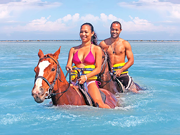 Chukka Horse Ride & Swim from Montego Bay Hotels (see restrictions)
