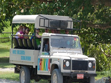 Chukka 4x4 Jeep Safari from Montego Bay/ Trelawny/ Lucea/ Negril Hotels