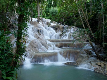 TOP 10 - Nine Mile & Dunns River Falls  from Lucea Hotels