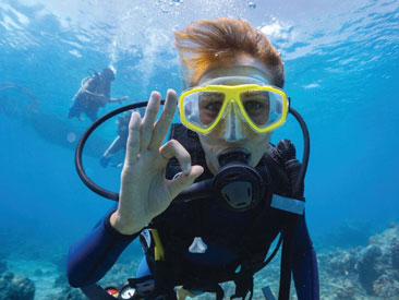 2 Tank Certified Diving in Cozumel (certified divers only, min age 17)