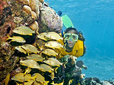 Snorkel Xtreme - Riviera Maya (min age 5)