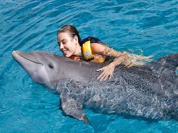 Aquaventuras Dolphin Swim Adventure (min age 8)