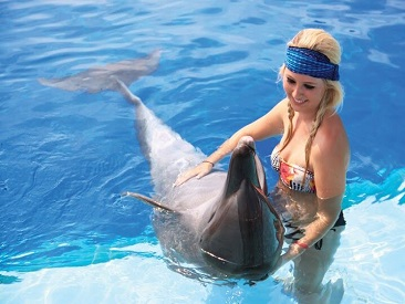 Dolphin Trainer For A Day (min age 12)