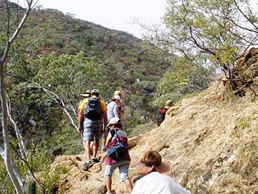 Hiking Tour to Fox Canyon (min age 5)