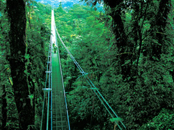 Costa rica monteverde region all inclusive vacation packages by