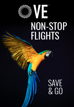 Save by flying our exclusive non-stop flights